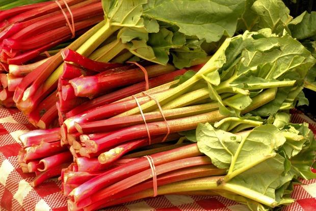 market-fresh-rhubarb-3503166_1920